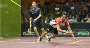 Ashour and Willstrop to clash again in ToC semis