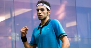 Ramy Ashour meets Elshorbagy in World Series final