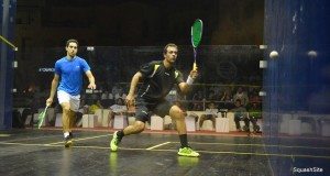 Ramy Ashour to meet Darwish in classic Egyptian encounter