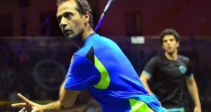 Amr Shabana shakes off Omar Mosaad to set up dream showdown with Ramy Ashour