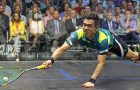 Mohamed ElShorbagy and Miguel Rodriguez on course for San Francisco showdown